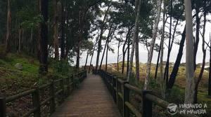 praia-de-figueiras-01