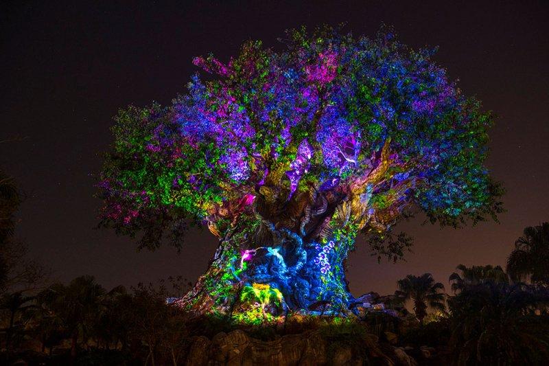 Novidades no parque Disney's Animal Kingdom a partir do Memorial Day