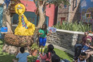 Big Bird's Twirl 'n' Whirl