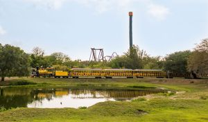 Serengeti Express Train
