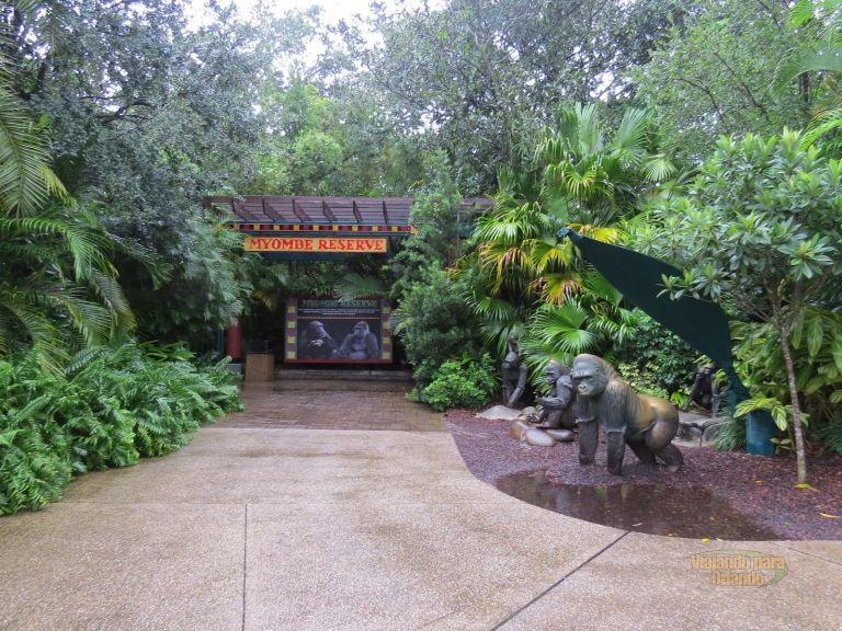 Myombe Reserve