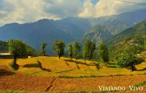 Una aldea en Dharamsala