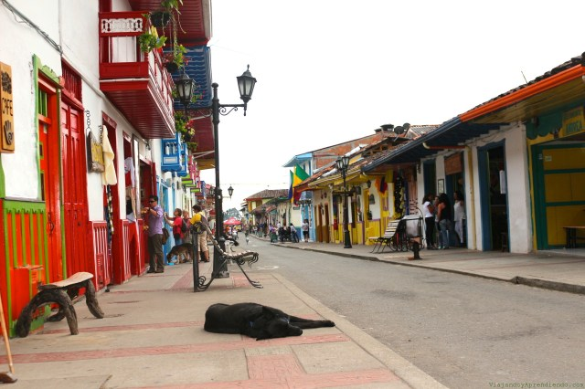 Salento colombia, downtown salento, perros colombia