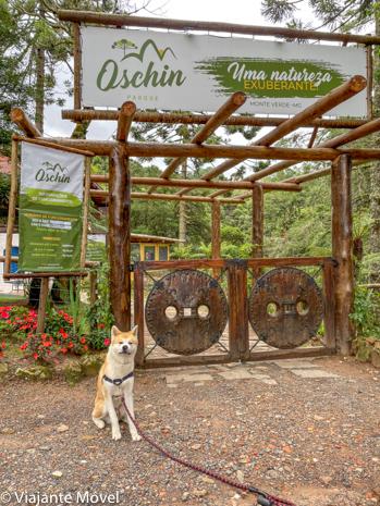 Ecoturismo pet friendly em Monte Verde