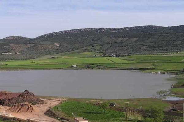 Laguna de Almodovar del Campo