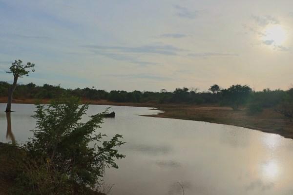 Paisaje Parque Nacional de Udawalawe