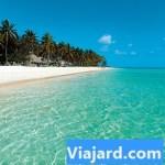 Spiaggia del Barcelo' Bavaro Caribe Beach