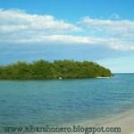 El Manglar Gigante y La Playa Palito Seco En Barahona