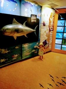 Parque Natural del Estrecho, Ecoturismo con niños: Parque Natural del Estrecho, Viajar despeina