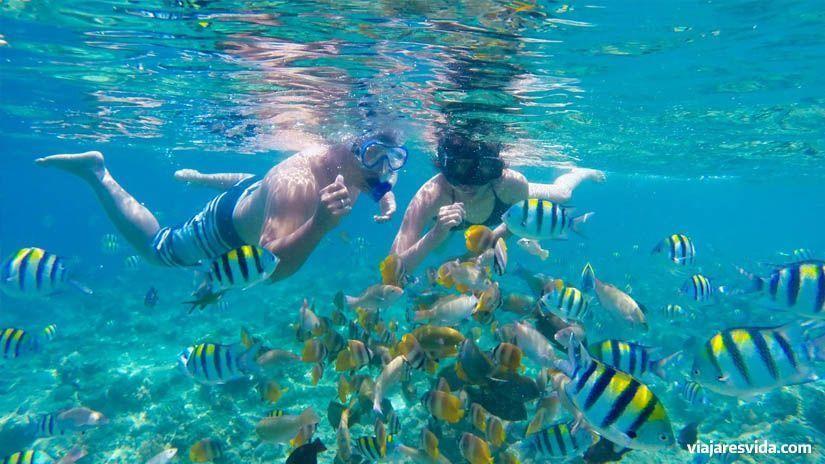 Submarinismo en las islas Gili