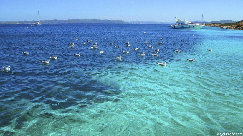 Piscinas naturales en archipiélago de la Maddalena
