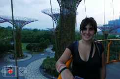Super Trees Singapur