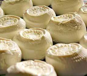Gastronomía, queso Maltés