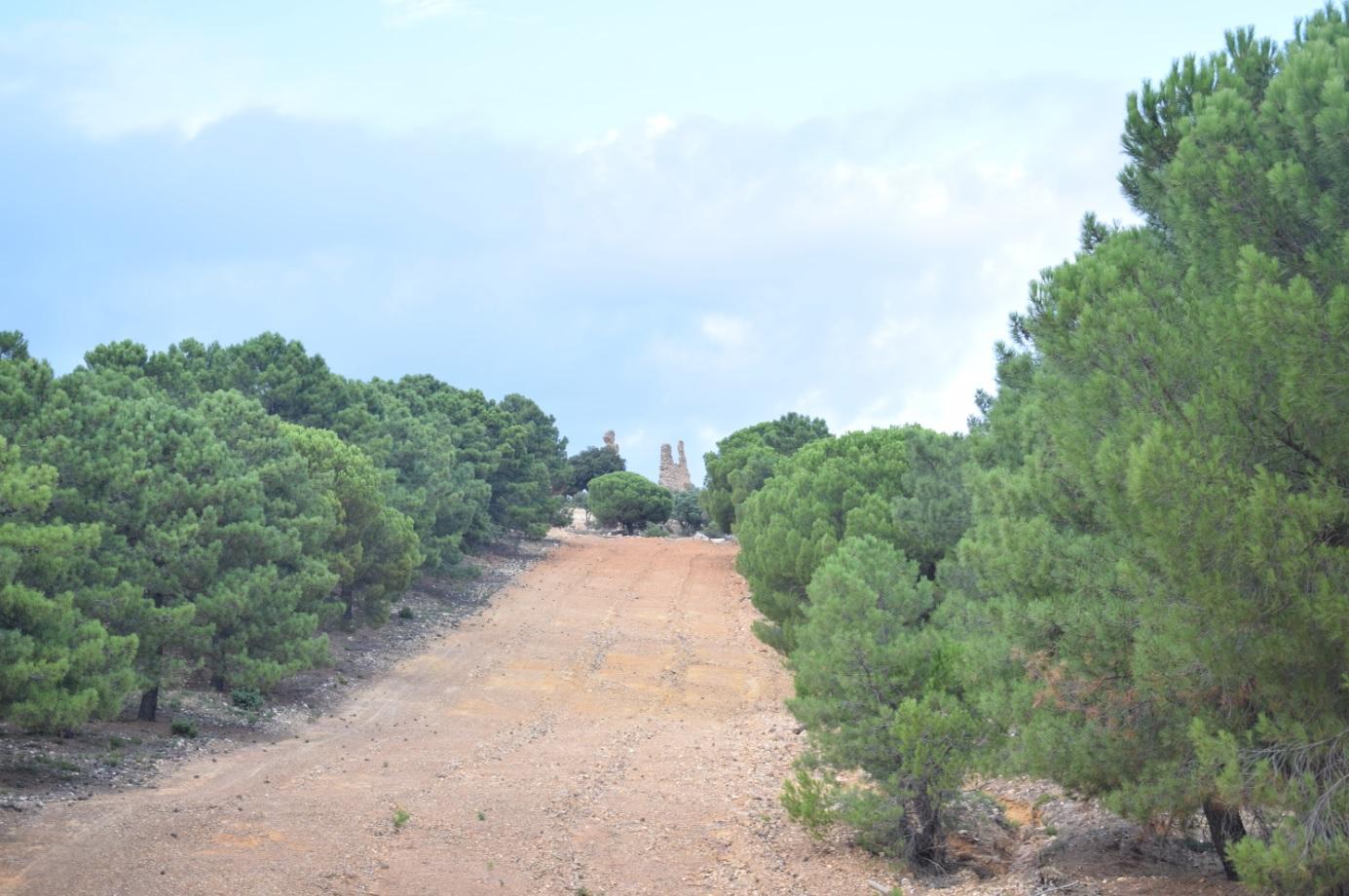 Se abre la inscripción para la ruta entre Miranda del Rey a Venta Cárdenas