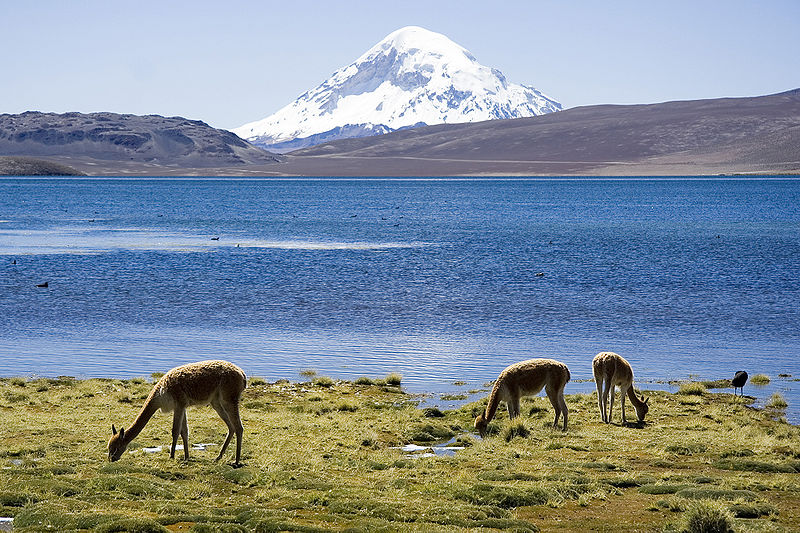 1301339904_800px_chungara_lake_and_volcan_sajama_chile_luca_galuzzi_2006