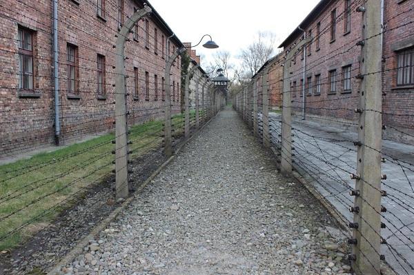 Auschwitz-Birkenau State Museum (2)