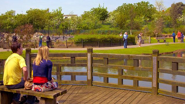 60259-640x360-barnes-wetlands-640