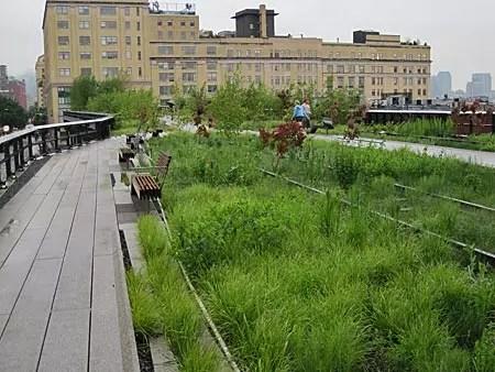 High Line Park, Nova York (foto: Marcie G. Pellicano)