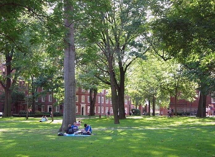 Harvard Yard (Photo from www.cambridge.com)