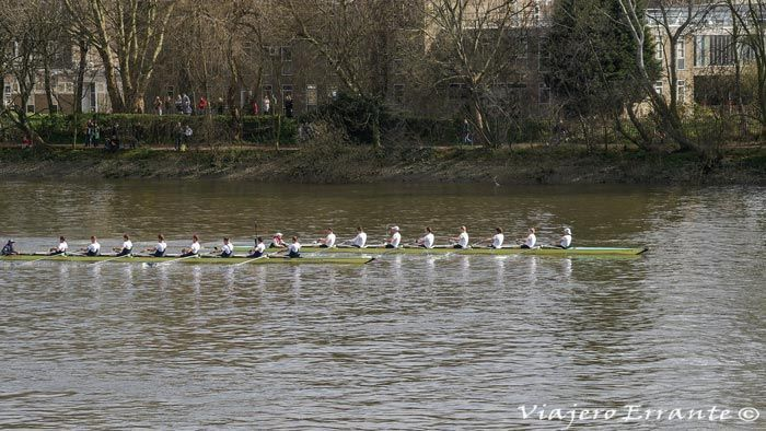 regata oxford cambridge