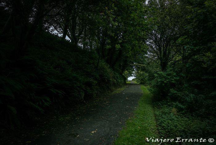 Downhill Demesne