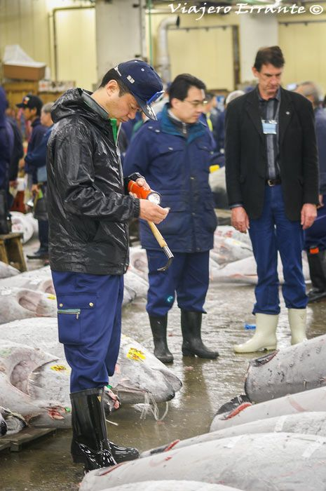 mercado de pescado de tsukiji