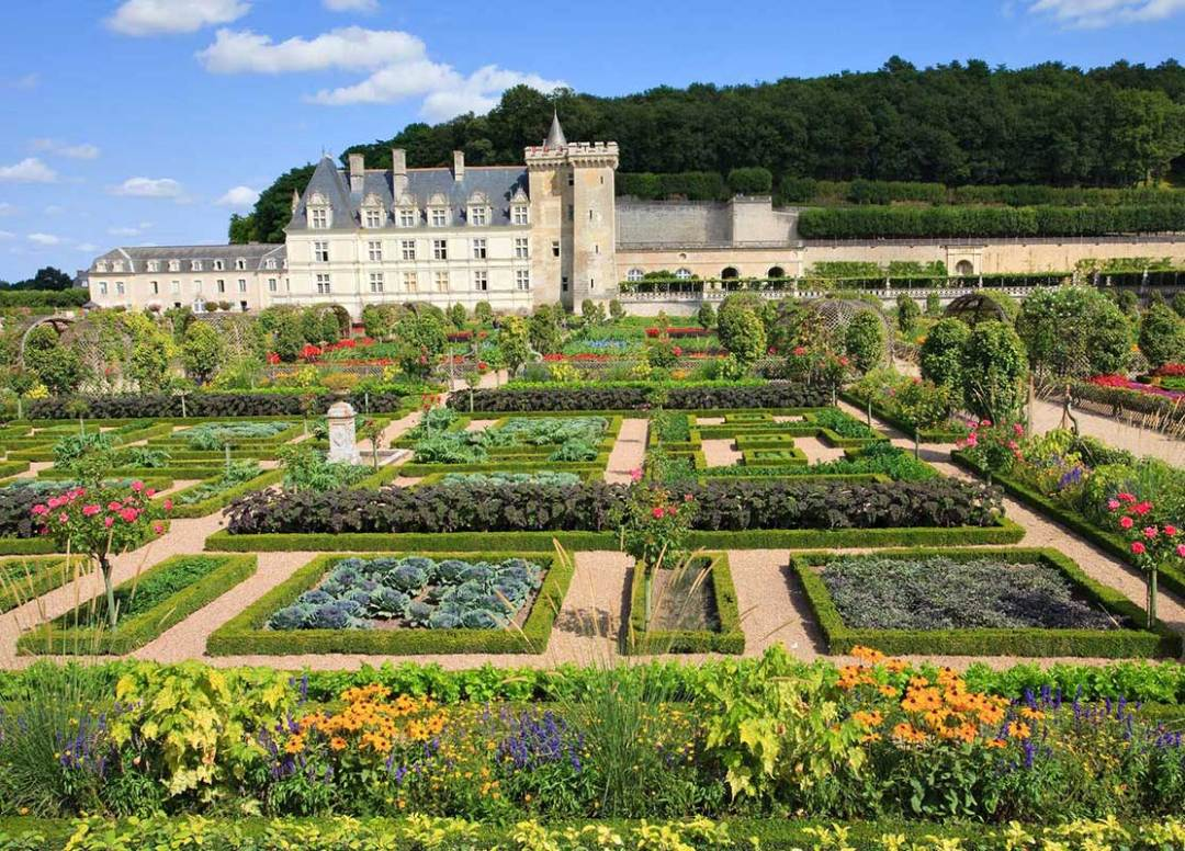 Castle of the Loire
