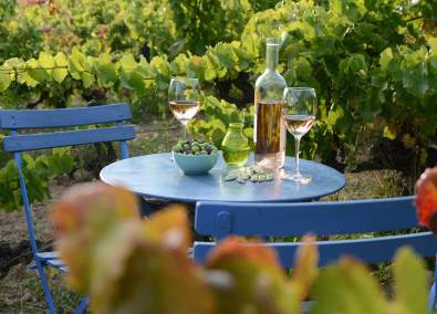 Vino rosado de Provence