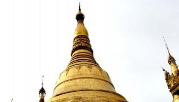 shwedagon capa