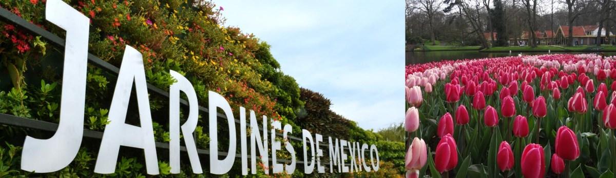 JARDINES DE MEXICO Y CUERNAVACA, 1 DIA