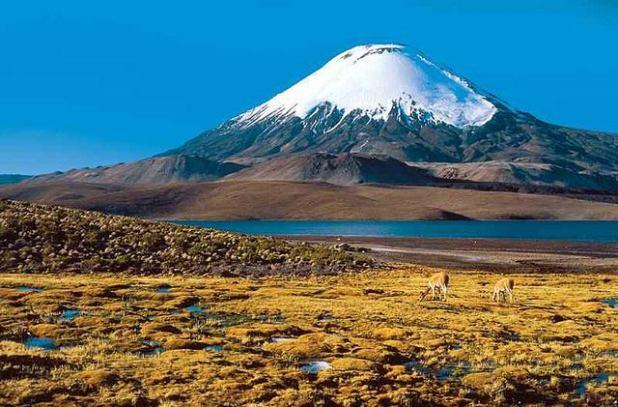 Atacama (3)
