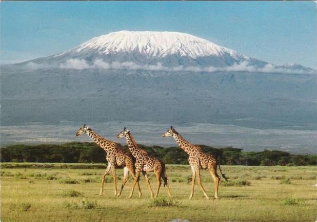 Subir Kilimanjaro en Tanzania