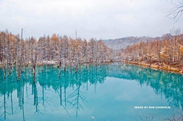 The Blue Pond, Biei, Hokkaido