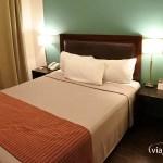 Rochester Hotel Classic - Habitación
