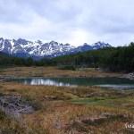 Sendero Laguna Esmeralda - Turbera