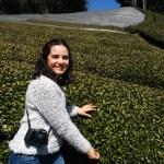 Obubu Tea Farm, Japón