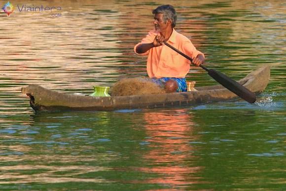 Homem transportando as fibras de coco utilizadas na fabricação das cordas usadas na montagem das Kettuvallams