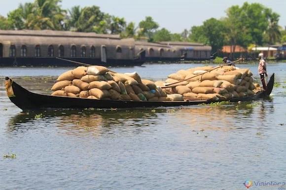 Transporte de arroz pelos canais do Kerala