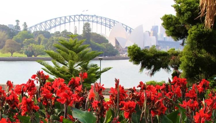 Jardim Botânico de Sydney