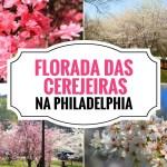 Florada das Cerejeiras na Philadelphia