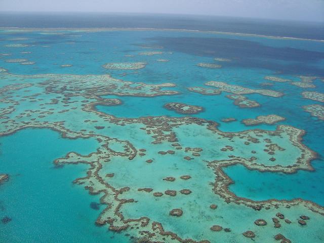 La gran Barrera de coral en Australia