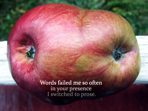poetry postcard: image of conjoined apples with text - Words failed me so often in your presence I switched to prose.