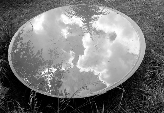 black-and-white photo of clouds and trees reflected in a basin of water