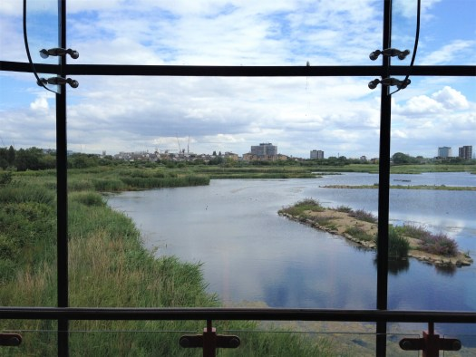 view out the observation deck, London Wetlands Centre