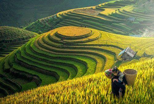 Viaje Vietnam, de Saigón a Sapa con crucero