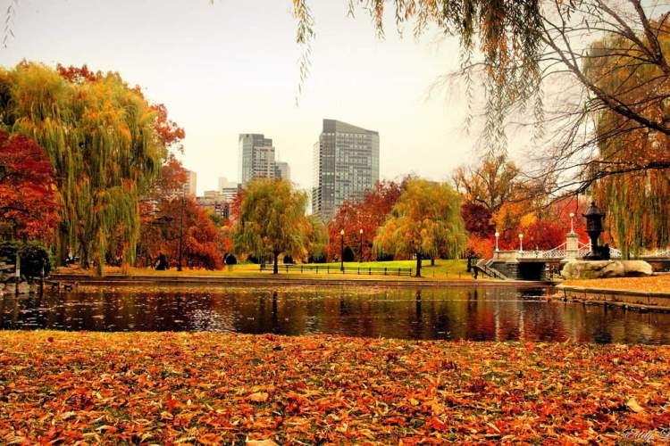 The Pros and Cons of Fall in Boston