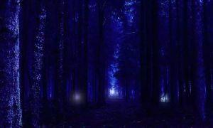 Aleya Ghost Light