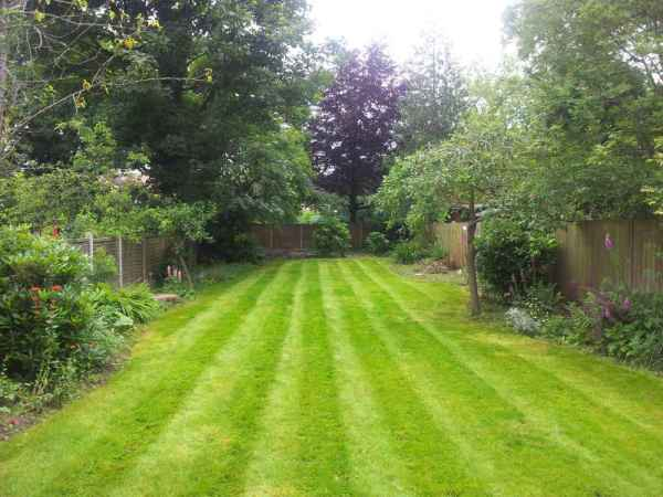 grass cutting and striping in birmingham