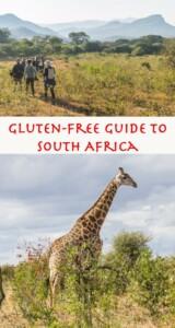 Gluten free South Africa Pinterest