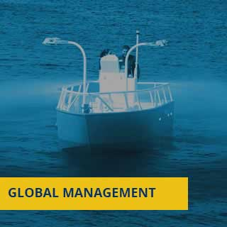 GLOBAL-MANAGEMENT-VICALSA
